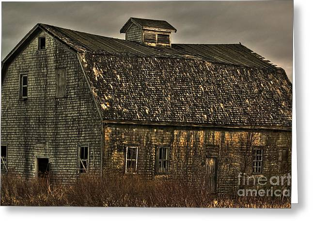 Old Maine Barns Greeting Cards - Old Barn Greeting Card by Alana Ranney