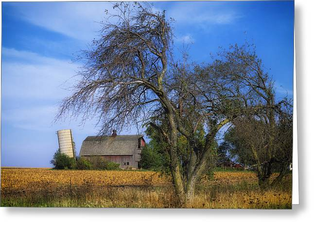Illinois Barns Photographs Greeting Cards - Old Barn and Leaning Silo Greeting Card by Mountain Dreams