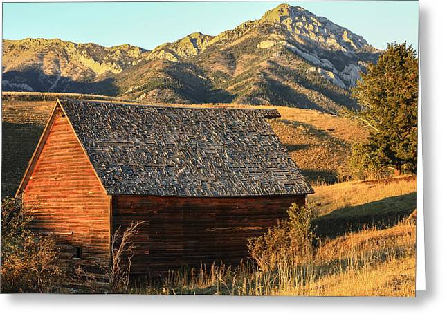 Outbuildings Greeting Cards - Old Barn Bridger Mountains Montana Greeting Card by David M Porter