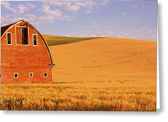 Agricultural Building Greeting Cards - Old Barn In A Wheat Field, Palouse Greeting Card by Panoramic Images