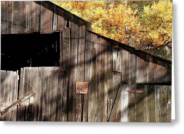 Outbuildings Greeting Cards - Old Barn in Autumn Greeting Card by Art Block Collections