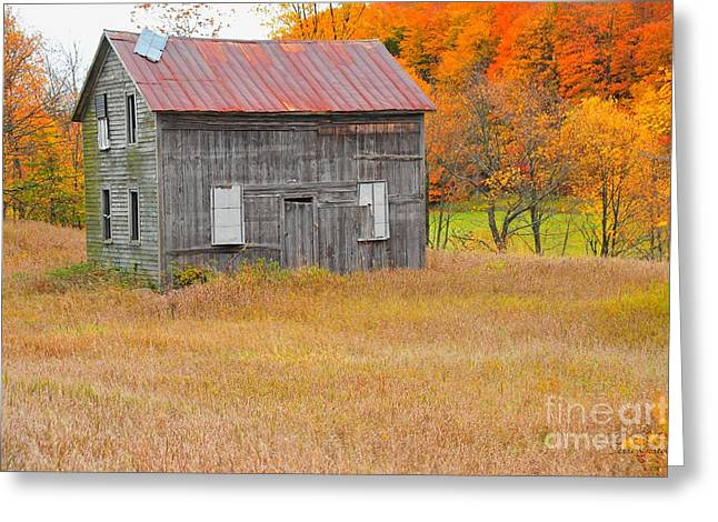 Rustic Greeting Cards - Old Barn in Autumn Greeting Card by Terri Gostola