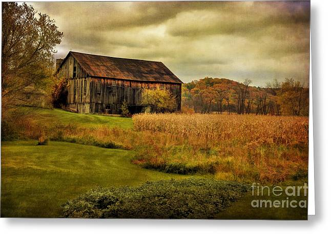 Old Barns Greeting Cards - Old Barn In October Greeting Card by Lois Bryan