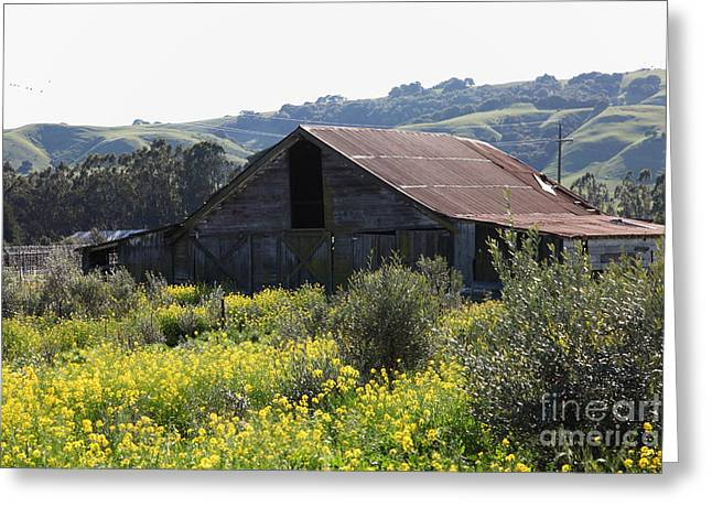 Old Barn In Sonoma California 5d22232 Greeting Card by Wingsdomain Art and Photography
