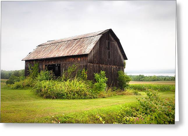 Seneca Greeting Cards - Old barn on Seneca lake - Finger Lakes - New York State Greeting Card by Gary Heller