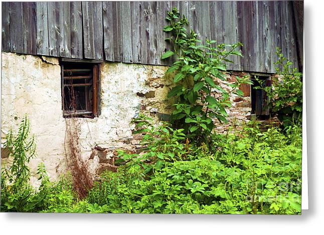 Pa Barns Greeting Cards - Old Barn Greeting Card by Paul W Faust -  Impressions of Light