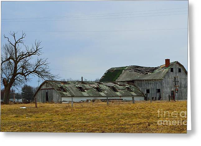 Old Barns In The Heartland Greeting Card by Alys Caviness-Gober