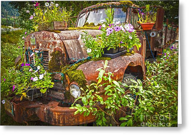 Old Truck Betsy Greeting Card by Mike Reid