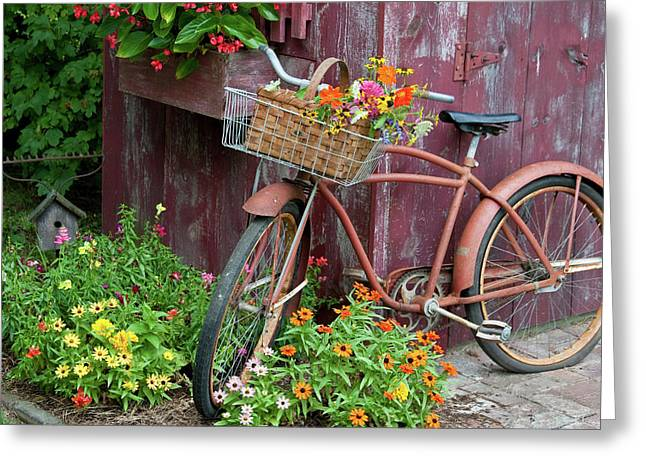 Old Bicycle With Flower Basket Next Greeting Card by Panoramic Images