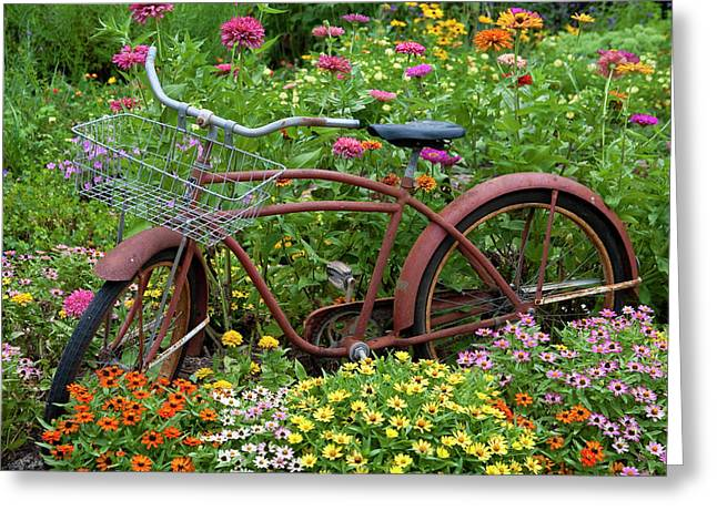 Old Bicycle With Flower Basket Greeting Card by Richard and Susan Day