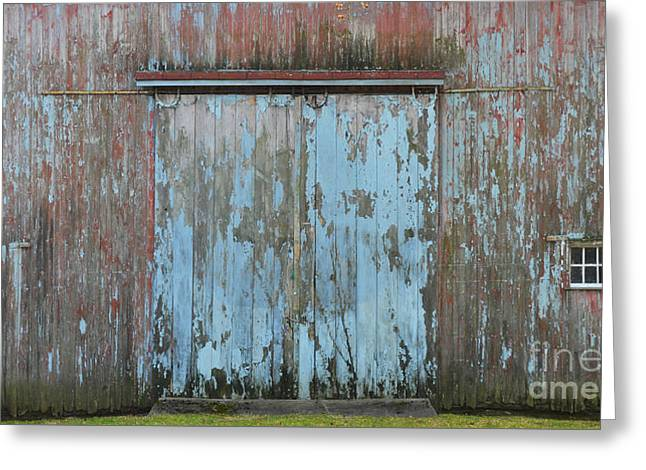 Barn Door Digital Greeting Cards - Old Blue Barn Peeling Chipping Paint Greeting Card by Anahi DeCanio - ArtyZen Studios