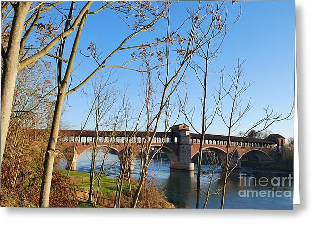Famous Bridge Greeting Cards - Old bridge on Ticino river Italy Greeting Card by Cristina Sferra