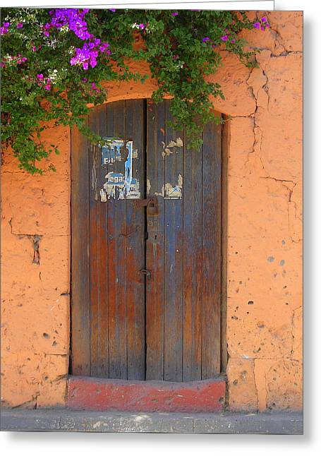 Old Brown Door 3 Greeting Card by Lew Davis