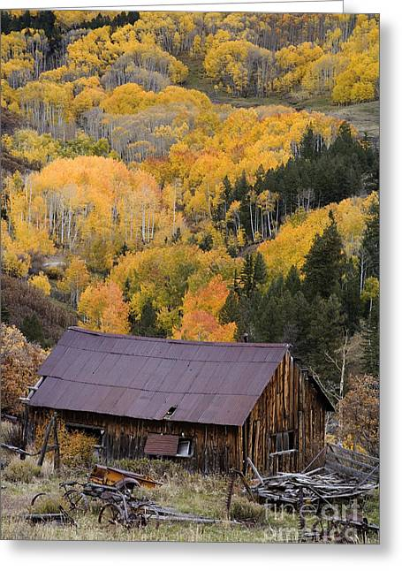 Old Barns Greeting Cards - Old Building Near Telluride, Co Greeting Card by Sean Bagshaw