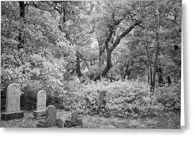 Grave Side Greeting Cards - Old Burying Ground Greeting Card by Cindy Archbell