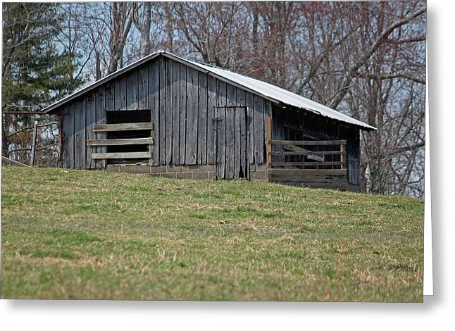 Wooden Shed Greeting Cards - Old Carolina Shed Greeting Card by Suzanne Gaff