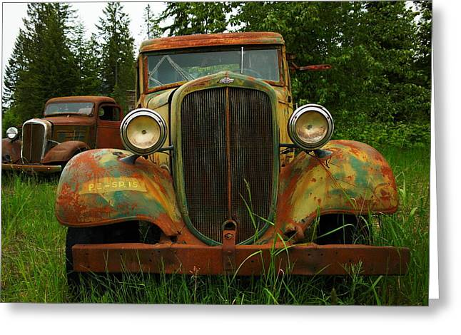 Rusted Cars Greeting Cards - Old Cars Left To Decorate The Weeds Greeting Card by Jeff  Swan