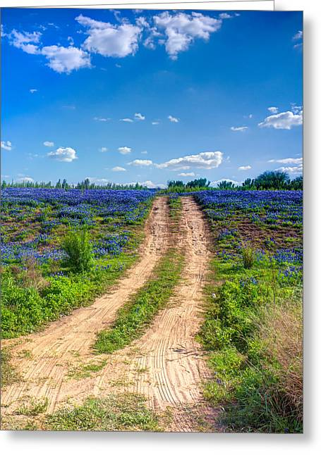 Bluebonnet Landscape Greeting Cards - Old Dirt Road Greeting Card by Chuck Underwood