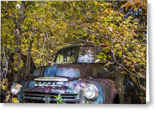 Old Dodge Greeting Card by Debra and Dave Vanderlaan