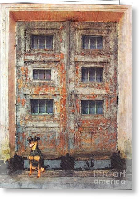 Daubs Greeting Cards - Old Door - Aged - Cracked - Abandoned Greeting Card by Liane Wright