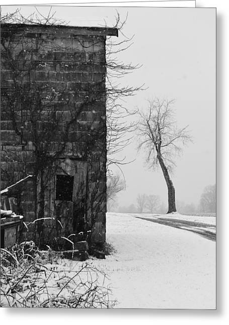 Snowy Day Greeting Cards - Old Door and Tree Greeting Card by William Jobes