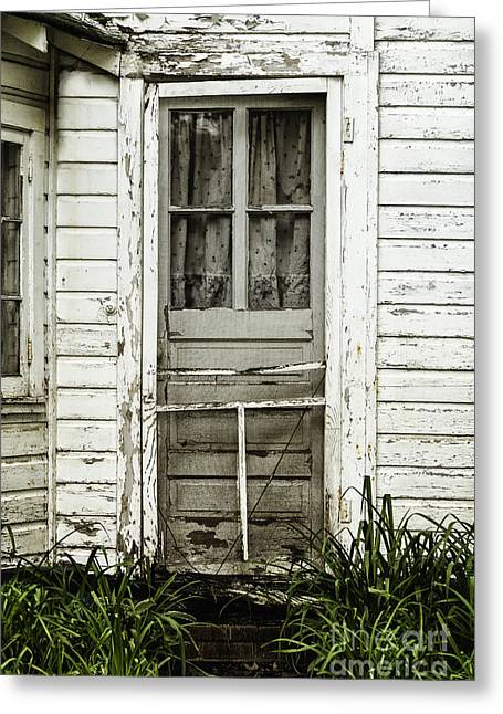 Screen Doors Greeting Cards - Old Door Greeting Card by Margie Hurwich