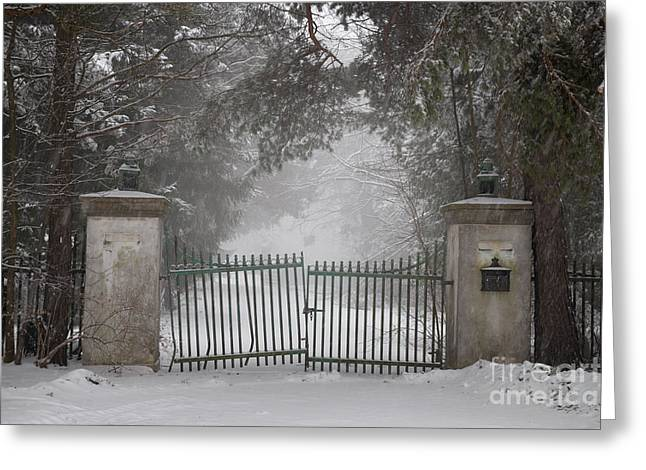 Crooked Greeting Cards - Old driveway gate in winter Greeting Card by Elena Elisseeva