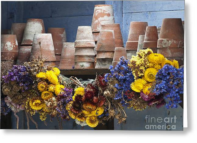 Dried Flower Greeting Cards - Old English Victorian Potting Shed Greeting Card by Tim Gainey
