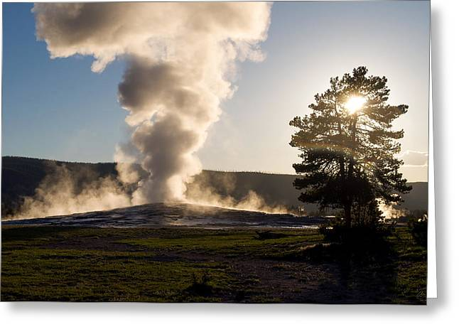Old Faithful Greeting Cards - Old Faithful Evening Greeting Card by Aaron Spong