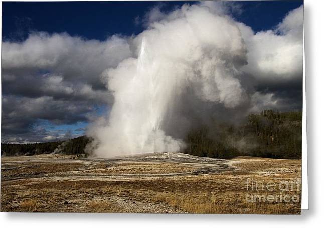 Old Faithful Greeting Cards - Old Faithful Geyser Greeting Card by Adam Jewell