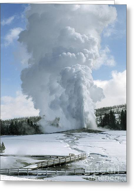 Winterscape Greeting Cards - Old Faithful In Her Glory - Yellowstone Greeting Card by Sandra Bronstein