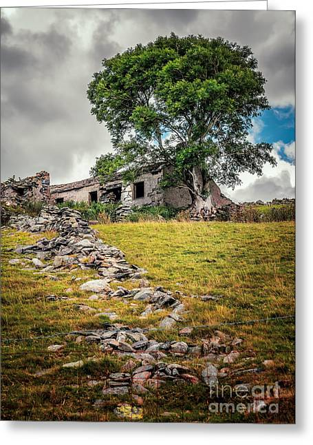 Dilapidated Greeting Cards - Old Farm House Greeting Card by Adrian Evans