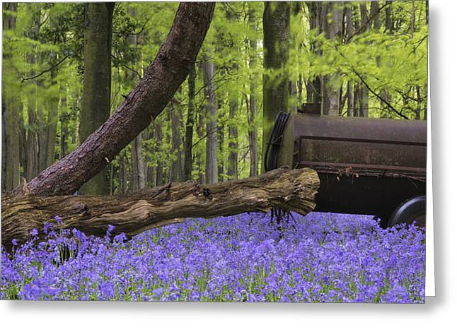 Old Farm Machinery In Vibrant Bluebell  Spring Forest Landscape Greeting Card by Matthew Gibson