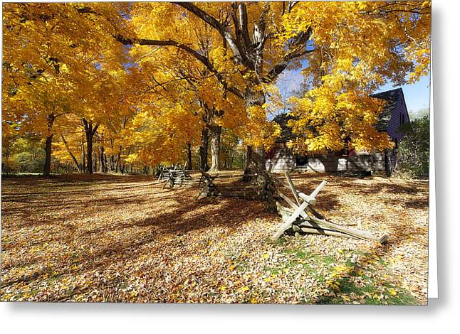Wick Greeting Cards - Old Farmroad with Autumn Colors Greeting Card by George Oze