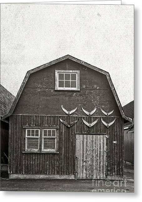 Shack Greeting Cards - Old Fishing Shack PEI Greeting Card by Edward Fielding