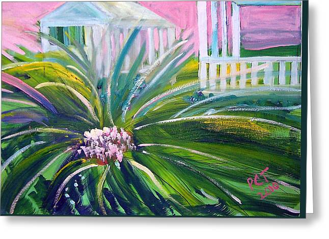 Patricia Taylor Greeting Cards - Old Florida Greeting Card by Patricia Taylor