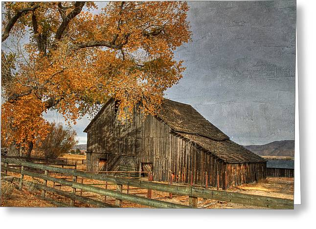 Old Barns Greeting Cards - Old Friends Greeting Card by Donna Kennedy