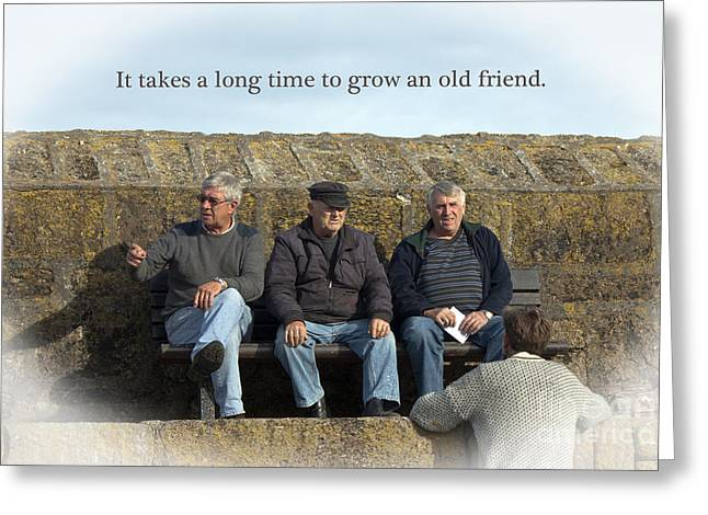 Gray Hair Greeting Cards - Old Friends Greeting Card by Terri  Waters