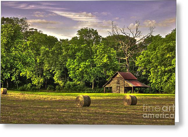 Old Friends The Barn And Oak Tree Greeting Card by Reid Callaway