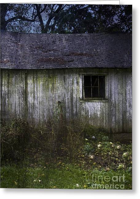 Abandoned Homes Greeting Cards - Old Garden Greeting Card by Margie Hurwich