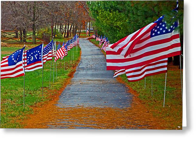 Old Glory Greeting Card by Andy Lawless