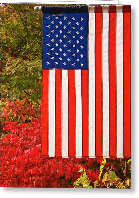 Ron Roberts Photography Greeting Cards - Old Glory Greeting Card by Ron Roberts