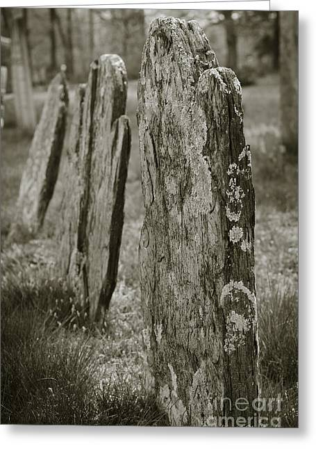 Locations Digital Art Greeting Cards - Old Gravestones I Greeting Card by David Gordon