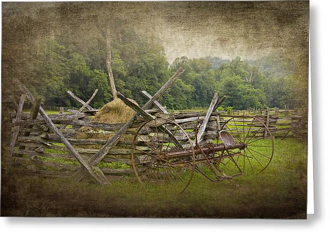 Old Hay Rake On A Farm Greeting Card by Randall Nyhof