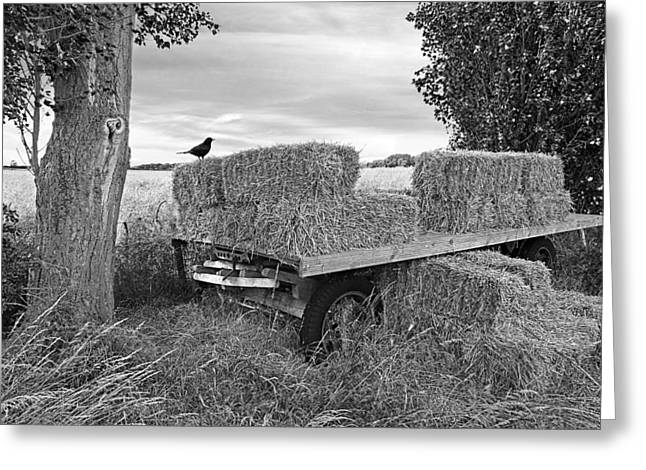 Harvest Time Greeting Cards - Old Hay Wagon in Black and White Greeting Card by Gill Billington