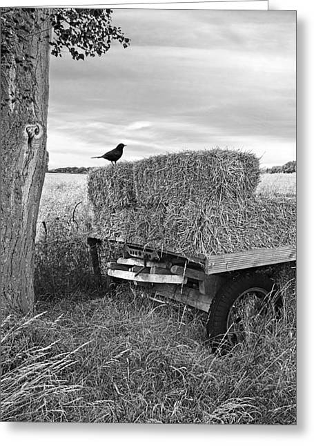 Harvest Time Greeting Cards - Old Hay Wagon in Black and White Vertical Greeting Card by Gill Billington