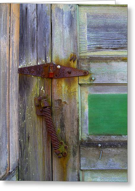 Hinged Greeting Cards - Old Hinge Spring Greeting Card by Rebecca Cozart