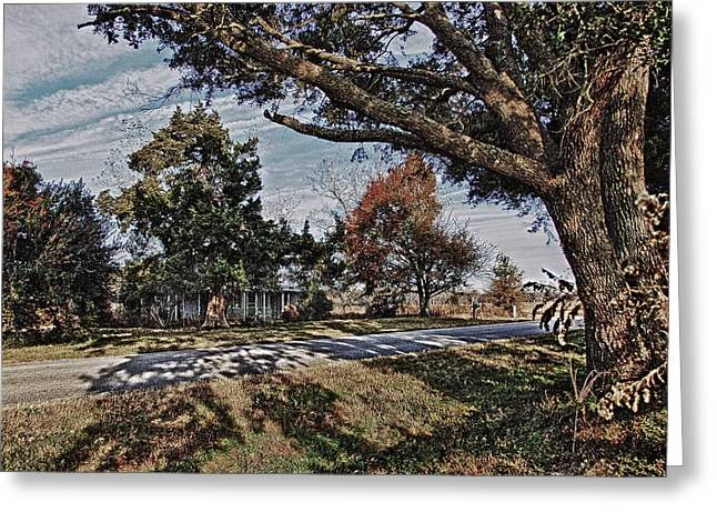 Crimson Tide Greeting Cards - Old House and the Trees Greeting Card by Michael Thomas