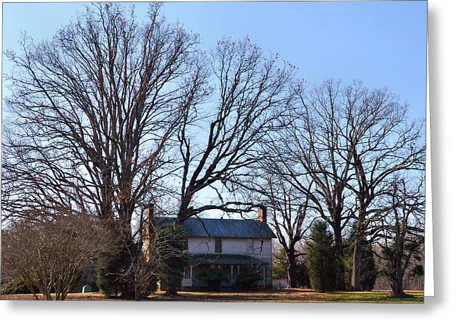 Old 421 Greeting Cards - Old House big trees Old 421 - 51008801b Greeting Card by Paul Lyndon Phillips