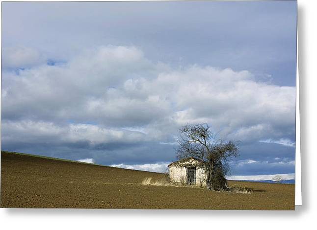 Old hut. Auvergne. France Greeting Card by BERNARD JAUBERT